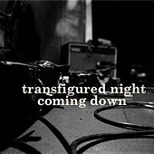 Coming Down von Transfigured Night