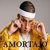 Amortajo by Bad Bunny