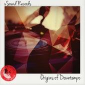 Usound Records: Origins of Downtempo de Various Artists