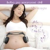 Těhotenství  ♫ Hudba pro nenarozené dítě de Various Artists