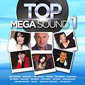 Top Mega Sound Vol. 1 de Various Artists