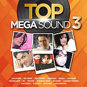 Top Mega Sound Vol. 3 de Various Artists