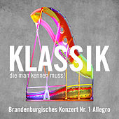 Brandenburgisches Konzert Nr. 1 Allegro (Brandenburg Concerto No. 1 - Allegro) von Ross Pople