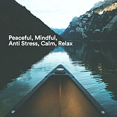Peaceful, Mindful, Anti Stress, Calm, Relax von Various