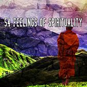 54 Feelings Of Spirituality by Asian Traditional Music