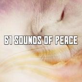 61 Sounds Of Peace de Ocean Sounds Collection (1)