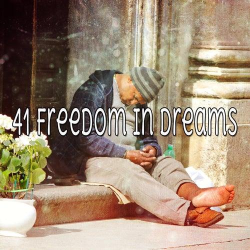 41 Freedom In Dreams de Dormir