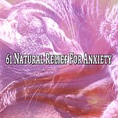 61 Natural Relief For Anxiety by Lullaby Land