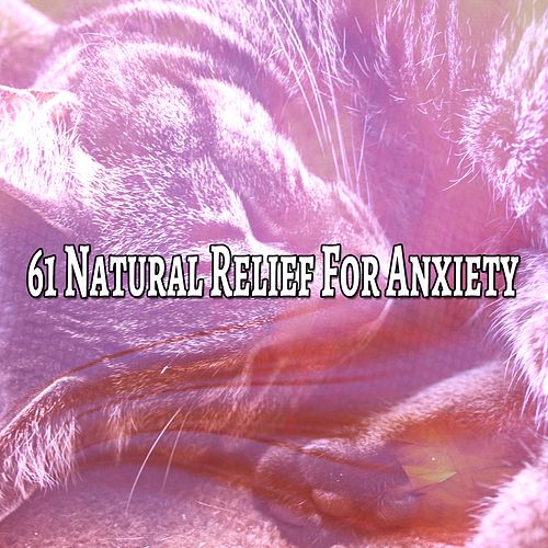 61 Natural Relief For Anxiety de Lullaby Land