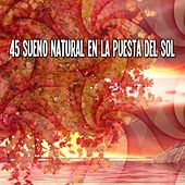 45 Sueno Natural En La Puesta Del Sol by White Noise Babies