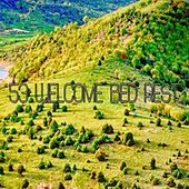 53 Welcome Bed Rest by Nature Sound Series