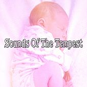 Sounds Of The Tempest by Ambient Rain