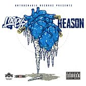 Reason by Loopy