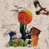Lo Que Nos Toca by Don Fulgencio