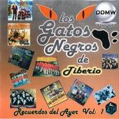 Recuerdos del Ayer, Vol. 1 de Los Gatos Negros De Tiberio
