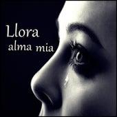Llora alma mía by Yoskar