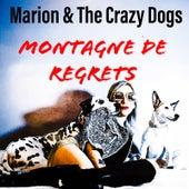 Montagne de regrets de Marion