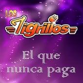 El Que Nunca Paga by Los Tigrillos