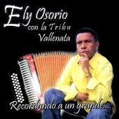 Recordando a un Grande de Ely Osorio Con La Tribu Vallenata