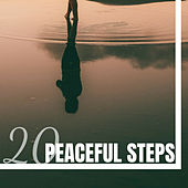 20 Peaceful Steps - Anxiety Relief, Meditation Music de White Noise Babies