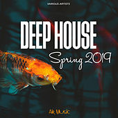 Deep House: Spring 2019 von Various