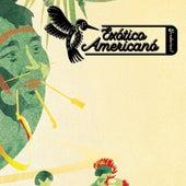 Exotico Americano by Frederico7