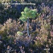Musikk til Landstads Kirkesalmebog Vol. 10 by Johan Muren