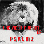 Undivided Pursuit de Psalmz