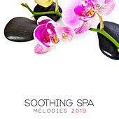 Soothing Spa Melodies: Music for Therapeutic Treatments of Massage, Bathing and Relaxation de Ambient Music Therapy