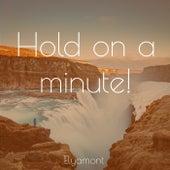 Hold On A Minute! von Elyamont