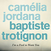 I'm a Fool to Want You by Baptiste Trotignon