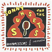 A Bigger Picture by Sonny & The Sunsets