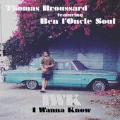 I wanna know by Thomas Broussard