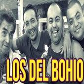 Mariluna de Los Del Bohio