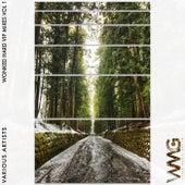 WoNKed Hard VIP Mixes, Vol. 1 - EP de Various Artists