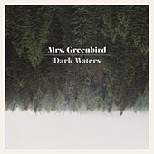 Dark Waters de Mrs. Greenbird