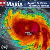 Maria de Jamby El Favo