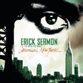 Chilltown, New York di Erick Sermon