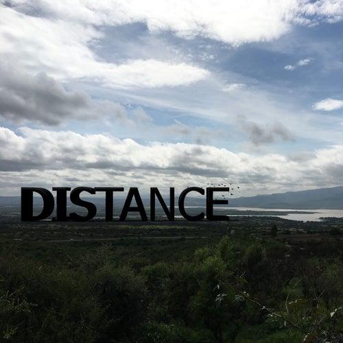 Distance van Arteonzkie