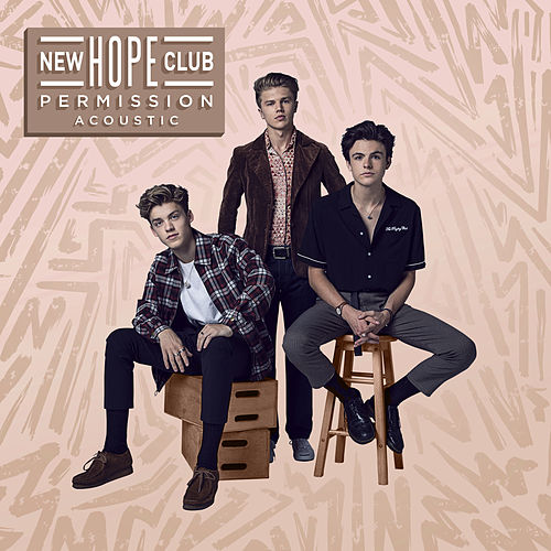 Permission (Acoustic) de New Hope Club