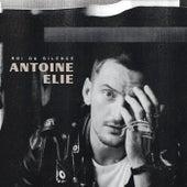 Roi du silence by Antoine Elie