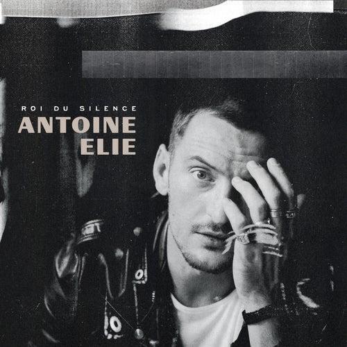 Roi du silence de Antoine Elie