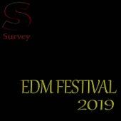 Edm Festival 2019 de Various