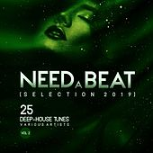 Need a Beat (Selection 2019) [25 Deep-House Tunes], Vol. 2 de Various Artists