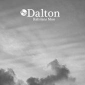 Dalton by Rahilani Moo