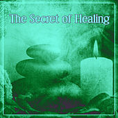 The Secret of Healing – Pure Spa Center, Healing Touch, Spa Meditation von Various Artists