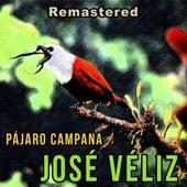 Pájaro Campana (Remastered) de José Veliz