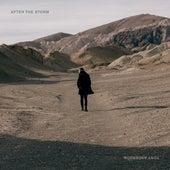 After the Storm de Tony Anderson