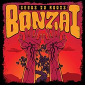 Seeds to Roots by Bonzai