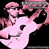 Boll Weevil by Blind Willie McTell